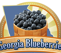 Georgia Blueberries